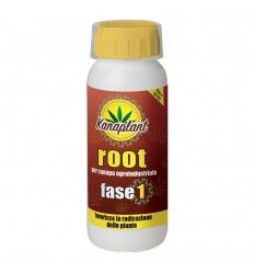 KANAPLANT - ROOT FASE 1   500gr
