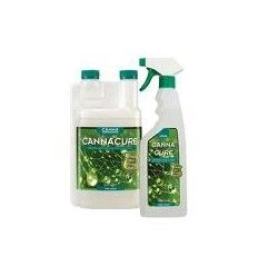 Cannacure concentrato 1L